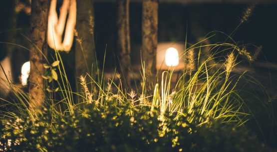 best motion sensor outdoor lights
